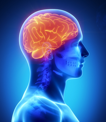 Concussion Diagnosis and Treatment